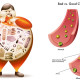 1_Natural-Ways-To-Lower-Cholesterol